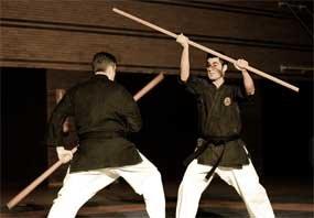 Gran éxito de la Gala Solidaria de Artes Marciales en Guadarrama