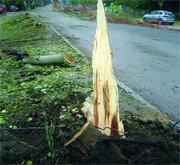 Los trabajos afectan a la carretera M-622 a la altura de la calle Calvario (Foto: Cedida)