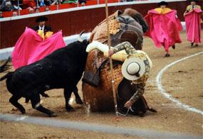 Se entregan los premios del Concurso de Fotografía Taurina de Guadarrama