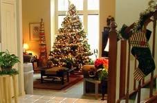 Galapagar anuncia las actividades programadas en Navidad
