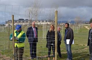 Plantados 1.500 árboles en la Dehesa Boyal y el Coto de las Suertes