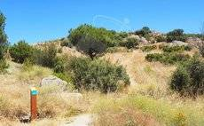 Nueva senda medioambiental en Torrelodones