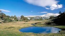 Equo denuncia el 'abandono' del Parque del Guadarrama