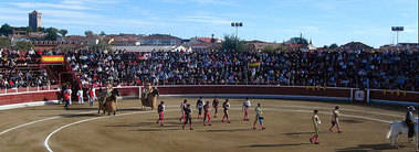 Cuatro novilladas componen el cartel de las fiestas patronales de Guadarrama