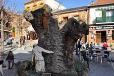 Miraflores de la Sierra contará con una réplica del 'Álamo Centenario'