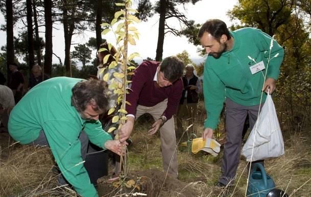 El Arboreto Luis Ceballos celebra su XX aniversario con un ejemplar de olmo blanco para su colección