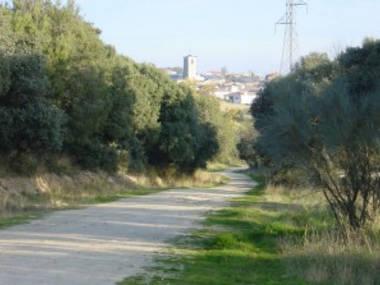 Hallado muerto el pasado domingo un ciclista en un camino de Colmenarejo