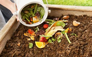 Éxito en la primera edición del proyecto de compostaje domiciliario