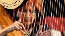 María Rosa Calvo-Manzano dona un arpa a la Escuela de Música de Collado Villalba