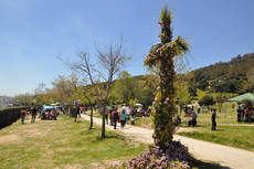 Moralzarzal celebrará el próximo miércoles la fiesta del Dos de Mayo