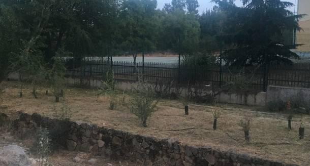 El Ayuntamiento de El Escorial ha procedido a limpiar los accesos al Instituto de Secundaria