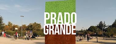 Prado Grande: proceso de reforma del punto de encuentro de la Colonia de Torrelodones