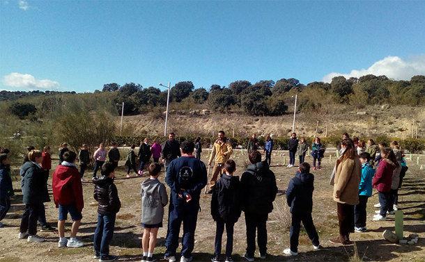 Los escolares de Torrelodones llevaron a cabo una importante replantación de encinas