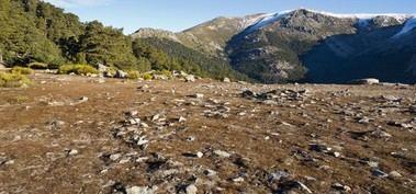 La Comunidad de Madrid se sumó a la celebración del Aurrulaque para la conservación y promoción de la Sierra