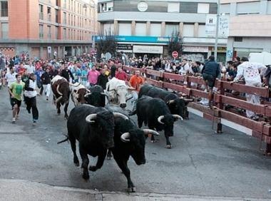 La Comunidad de Madrid firma un convenio con 28 municipios para promocionar los toros