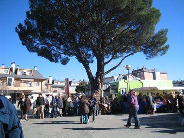 Podemos, IU, Cambiemos Villalba y Equo critican los proyectos de inversión anunciados por la alcaldesa de Collado Villalba