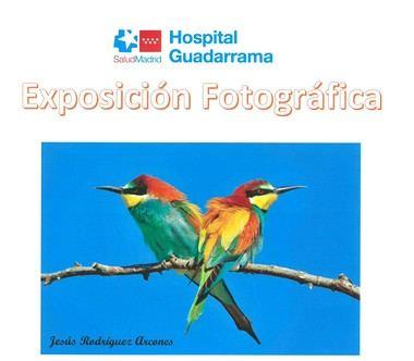 El sábado finaliza la exposición el 'Espacio Natural' en el Hospital Guadarrama