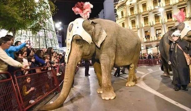 De nuevo animales en la cabalgata de Reyes de la Villa de El Escorial