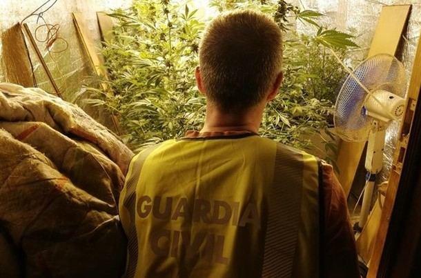 La Guardia Civil detiene a cuatro personas en Torrelodones por cultivar marihuana en un laboratorio