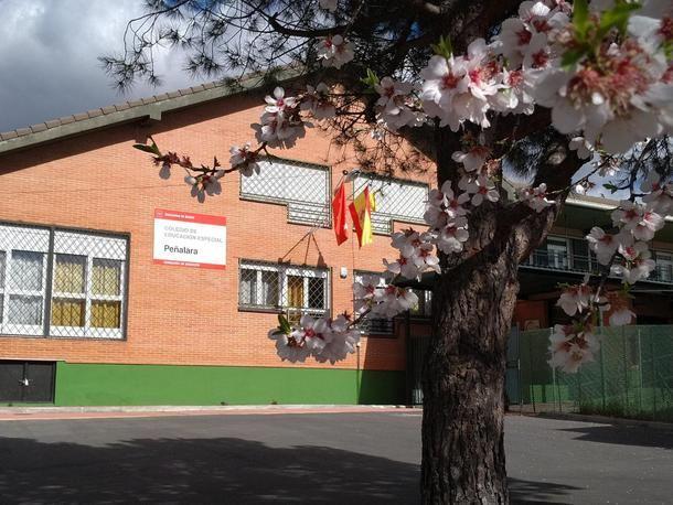 El Colegio Peñalara de Collado Villalba celebró su primer Consejo Escolar