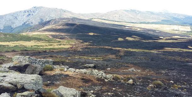 Becerril de la Sierra organiza la I Marcha Cicloturista para la reforestación de La Morcuera