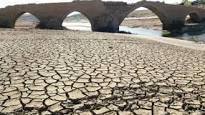 La emergencia medioambiental no es más grave que la emergencia democrática