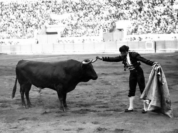 La Comunidad de Madrid homenajeará a Joselito 'El Gallo' en la Feria de San Isidro 2020