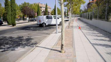 El Ayuntamiento realiza el solado de alcorques en las principales calles de Boadilla